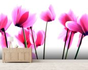Cyclamen wall mural living room preview