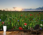 Poppy Fields wall mural kitchen preview