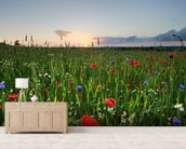 Poppy Fields wall mural living room preview