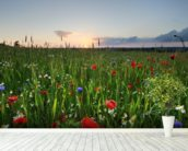 Poppy Fields wall mural in-room view