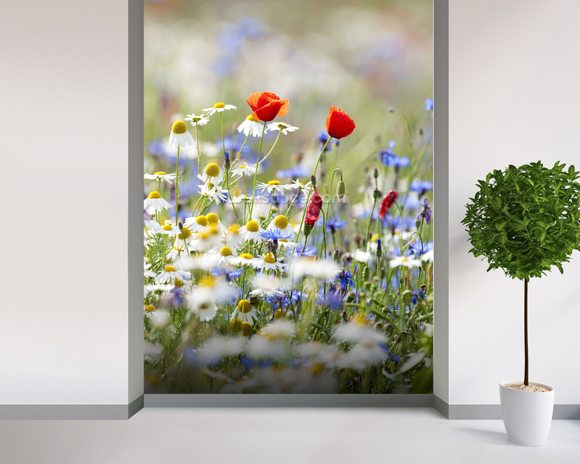Wild Flower Meadow Wallpaper Wall Mural