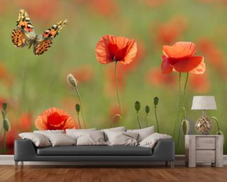 Poppies and Butterflies wall mural