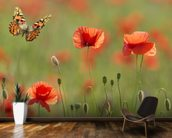 Poppies and Butterflies wall mural kitchen preview