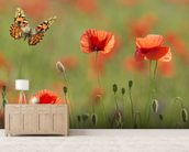 Poppies and Butterflies wall mural living room preview
