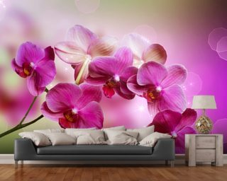 Orchid wall mural