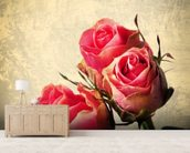 Vintage Roses mural wallpaper living room preview