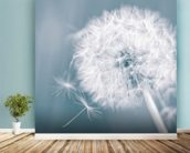 Dandelion Clock wall mural in-room view