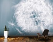Dandelion Clock wall mural kitchen preview