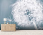 Dandelion Clock wall mural living room preview