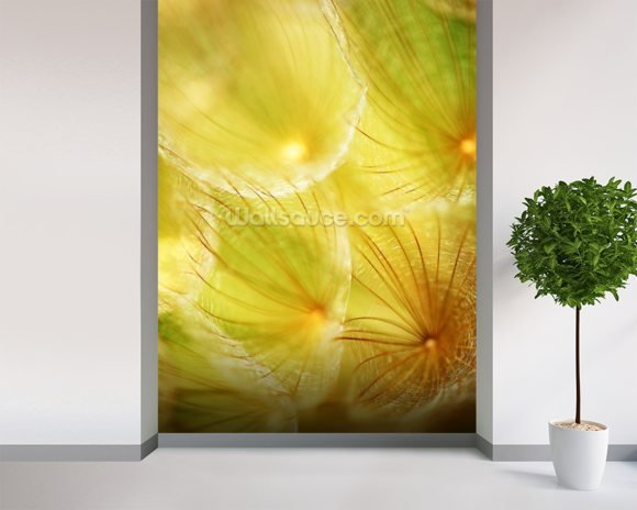 Soft Dandelion - Yellow wall mural room setting