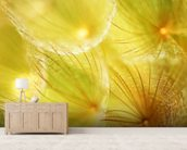 Soft Dandelion - Yellow wall mural living room preview
