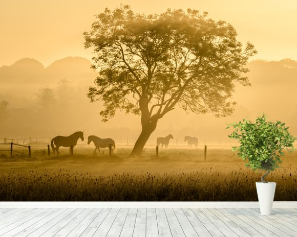 Golden Horses wall mural room setting