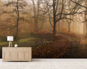 Which Path wall mural living room preview