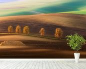 Moravian Trees wall mural in-room view