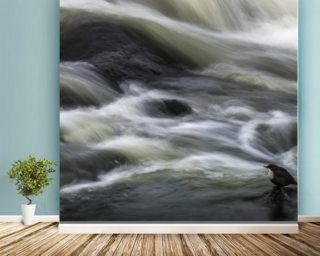 Flowing Contemplation wall mural