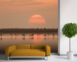 Flamingos at Sunrise mural wallpaper
