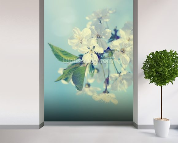 Cherry Blossoms mural wallpaper room setting