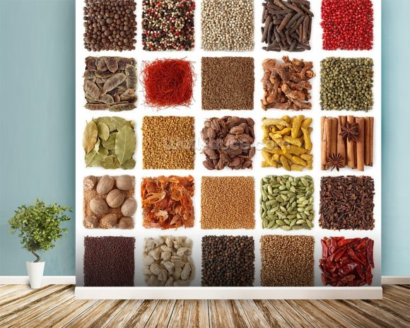 Indian Spice Selection wall mural room setting