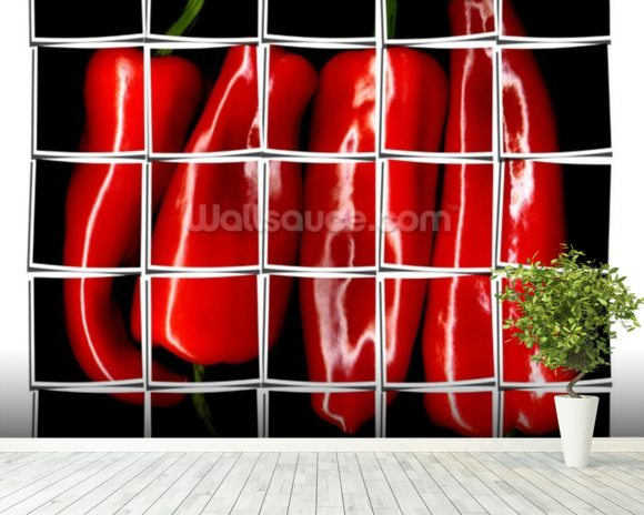 Red Paprika wall mural room setting