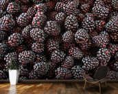 Blackberries mural wallpaper kitchen preview