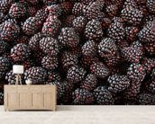 Blackberries mural wallpaper living room preview