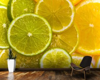 Orange, Lemon and Lime Slices wallpaper mural