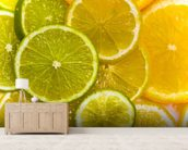 Orange, Lemon and Lime Slices wallpaper mural living room preview
