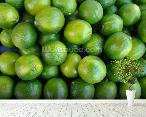 Fresh Limes wallpaper mural room setting