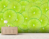 Limes mural wallpaper living room preview