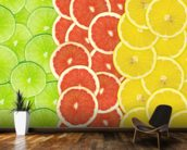 Citrus Slices mural wallpaper kitchen preview