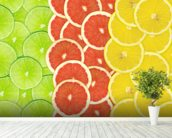 Citrus Slices mural wallpaper in-room view