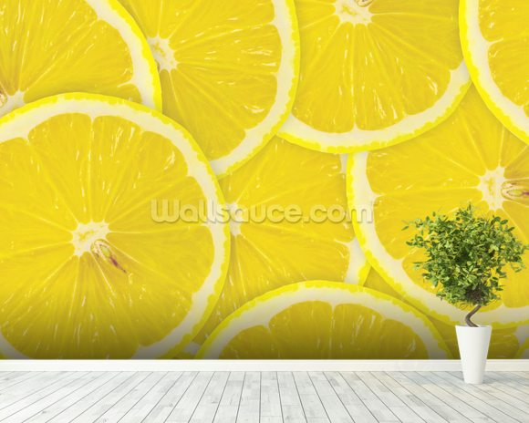 Lemon Slices wallpaper mural room setting