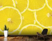 Lemon Slices wallpaper mural kitchen preview