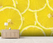 Lemon Slices wallpaper mural living room preview