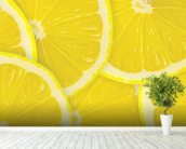 Lemon Slices wallpaper mural in-room view