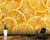 Dried Lemons wall mural kitchen preview
