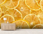 Dried Lemons wall mural living room preview