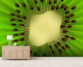 Kiwi Fruit wall mural living room preview