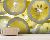 Lemon wall mural living room preview