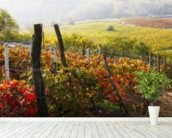 Vineyard in Bloom wall mural in-room view