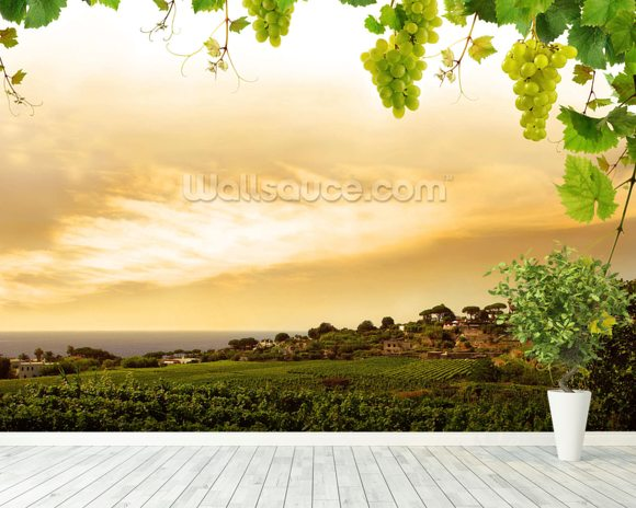 Vineyard wallpaper mural room setting