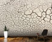 Dry Earth wall mural kitchen preview