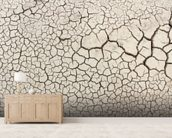 Dry Earth wall mural living room preview