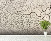 Dry Earth wall mural in-room view