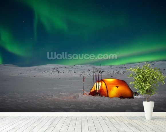 Northern Lights Experience wall mural room setting