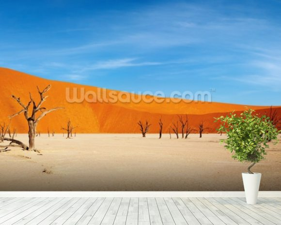 Namib desert wallpaper wall mural wallsauce for Desert mural wallpaper