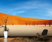Namib Desert wall mural kitchen preview