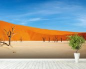 Namib Desert wall mural in-room view