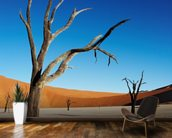 Namibia wall mural kitchen preview