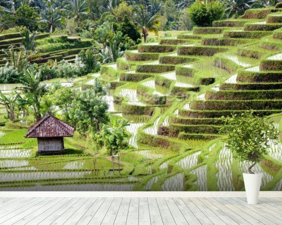 Bali indonesia wallpaper wall mural wallsauce for Mural indonesia